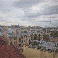 Питерские крыши :: galina bronnikova