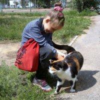 Расскажи мне кошка... :: Татьяна Полежаева