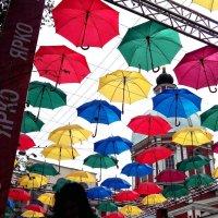 Зонтики,зонтики... :: Александр Яковлев