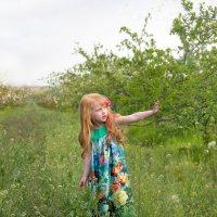 весна в саду...) :: Райская птица Бородина