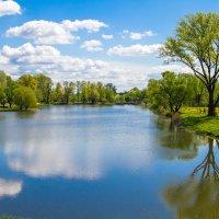 Весенний пейзаж :: Наташа С