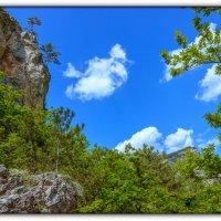 Большой каньон :: Sergey Bagach