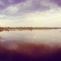 Вид с Журавлевского моста :: Александр Сальтевский