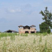 Домик в деревне :: Galia Rota
