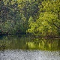 На озере :: Александр