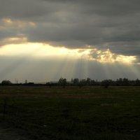 Божественный свет :: nadyasilyuk Вознюк