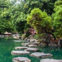 Японские сады в Сиднее :: Валентина Ломова