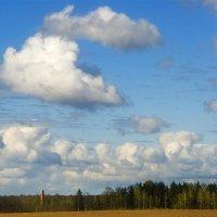 облака бродяги :: Руслан Репкин