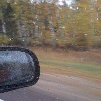 Осенний дождь. :: Valeri Kn