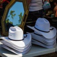 Какой ковбой без шляпы? :: Владимир Gorbunov