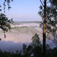Туман :: Сергей Бурнышев