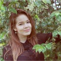 Сыплет черемуха снегом... :: Римма Алеева