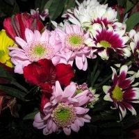 Букет цветов :: Canon PowerShot SX510 HS