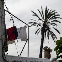 Марокко, Рабат :: Людмила Синицына