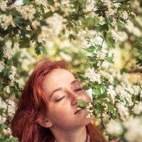 Джульетта в цветах 2 :: Сергей Воробьев