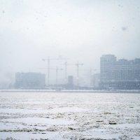 Снегопад :: shvlad
