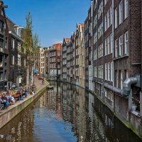 Tulips in Holland 04-2015 Amsterdam 2 :: Arturs Ancans