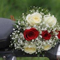 Кто поймает свадебный букет? :: Tatiana Markova