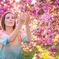 ♥ Анютка, декоративные яблони Недзвецкого ♥ :: Alex Lipchansky