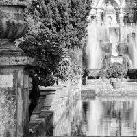 near the fountain :: Dmitry Ozersky
