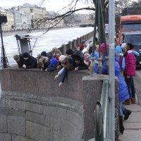 Повезет не повезет :: Михаил Сергеевич Карузин