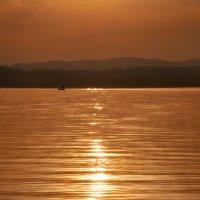 Рыбалка на золотой реке :: Лидия Рьянова