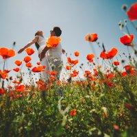 любовь и маки :: Кубаныч Молдокулов