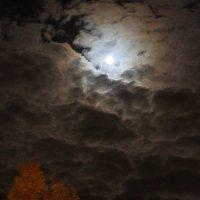 Осень :: Григорий Кучушев