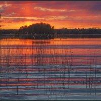 майский пожар :: liudmila drake