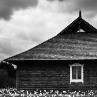 Деревня :: Robert Kozlovskij
