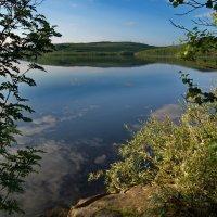 """Озеро """"Большой лапоть"""". :: kolin marsh"""