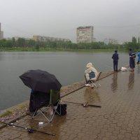 Дождь - рыбалке не помеха :: Андрей Лукьянов