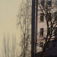 Тень :: Константин Воробьев