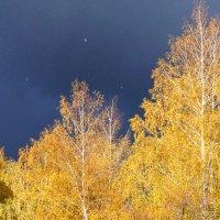 осень :: Олег
