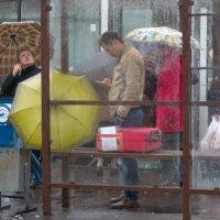 Откуда берется дождь? :: Елена Жукова