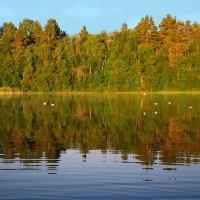 Бородаевское озеро.Рассвет :: Валерий Талашов