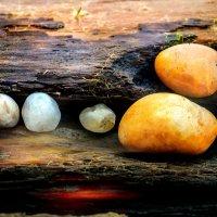 Байкальские камушки :: Хась Сибирский