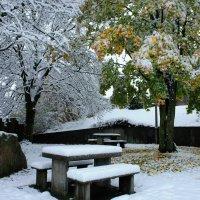 шел первый снег, но осень не сдавалась :: Elena Wymann