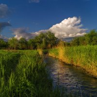 Майский вечер у речушки... :: Moloh.75 Евгений