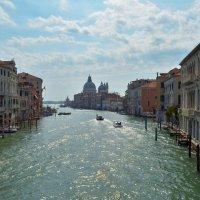 Venezia. Canal Grande. :: Alex Haller