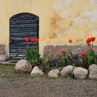 Загадочная дверца :: Мария Кондрашова