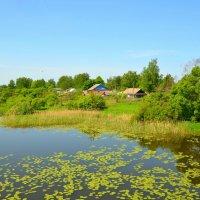 Деревня Каспля :: Милешкин Владимир Алексеевич