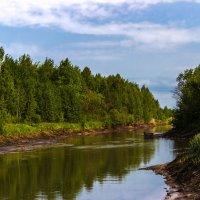 Весенний пейзаж :: Tatsiana Latushko