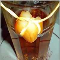 Пиво с сыром и кальмаром... :: Кай-8 (Ярослав) Забелин