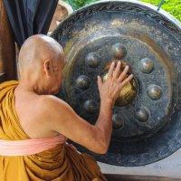 Монах с поющей чашей :: Светлана Гусельникова
