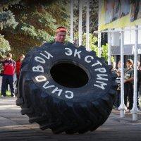 Силовой экстрим-2 :: Андрей Заломленков