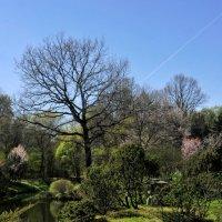 Ботанический сад :: Анатолий Нестеров