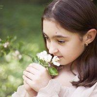 яблони цветут :: Марина Ионова