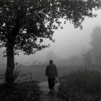 Осенний путь :: Sage Ekchard