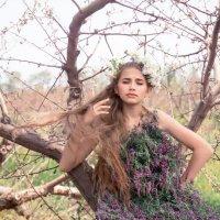 лесная фея... :: Райская птица Бородина